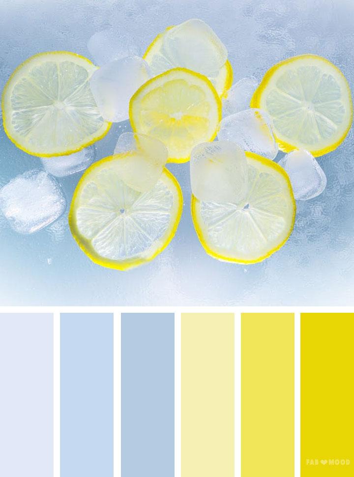 Blue and lemon color scheme