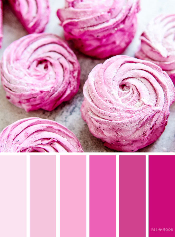Shades of pink color scheme #color #colorpalette