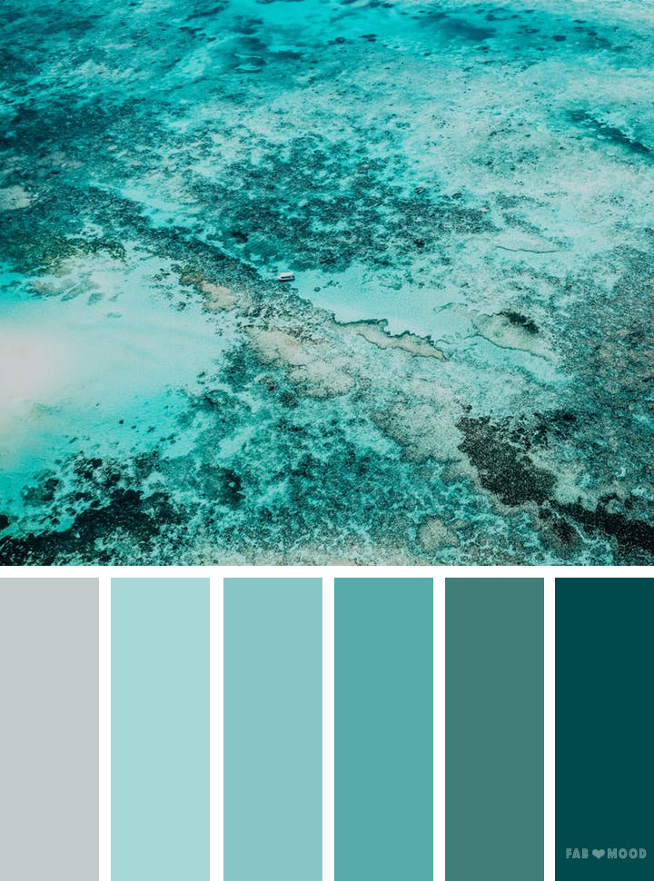 Green ocean color scheme – Color Palette #22