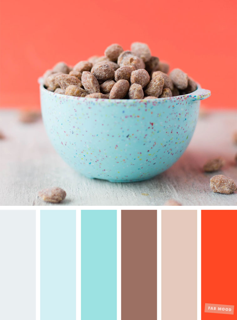 Color Inspiration : Cocoa + light blue + turquoise & Coral