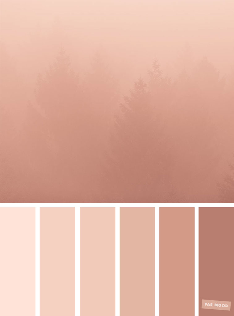 Blush Tones Pretty Blush Color Scheme Fabmood