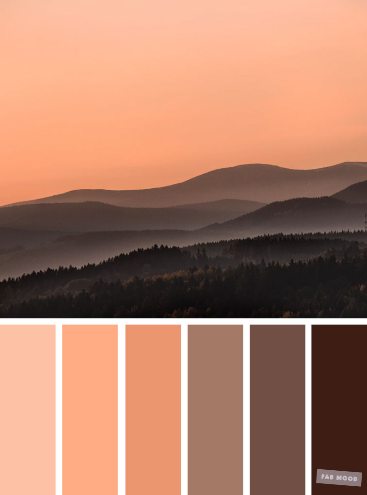 Brown chocolate and peach color combination