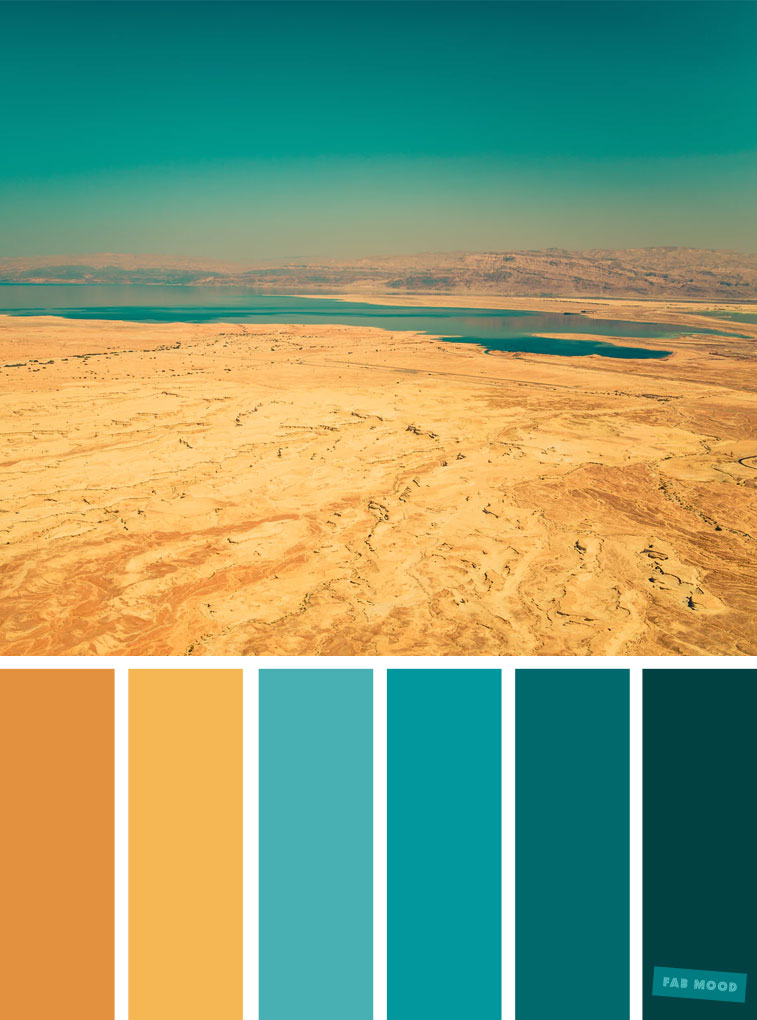 Color Inspiration : Teal and Yellow Color Scheme #color #colorscheme #colorpalette #teal #yellowteal