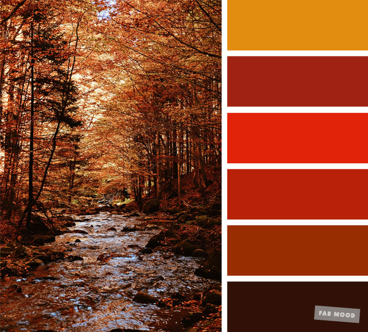59 Pretty Autumn Color Schemes { Burnt orange + Brown } color palette #color #colorscheme #colorpalette #fall #autumncolour #autumn #fallcolor