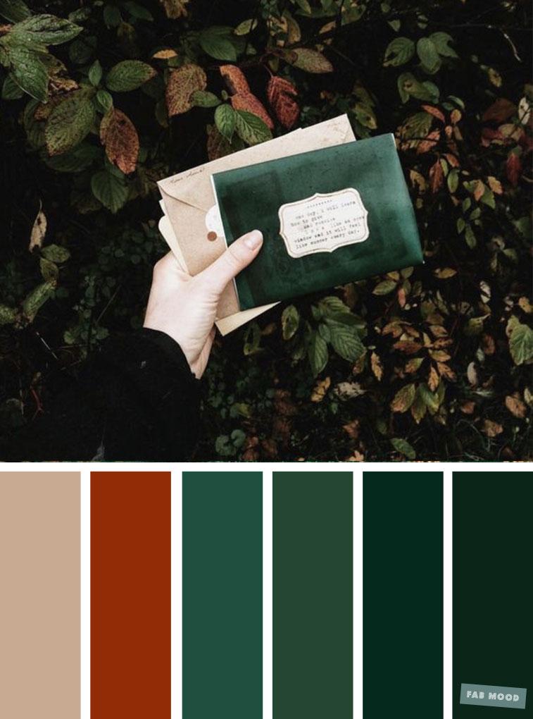 Autumn green + burnt orange color scheme
