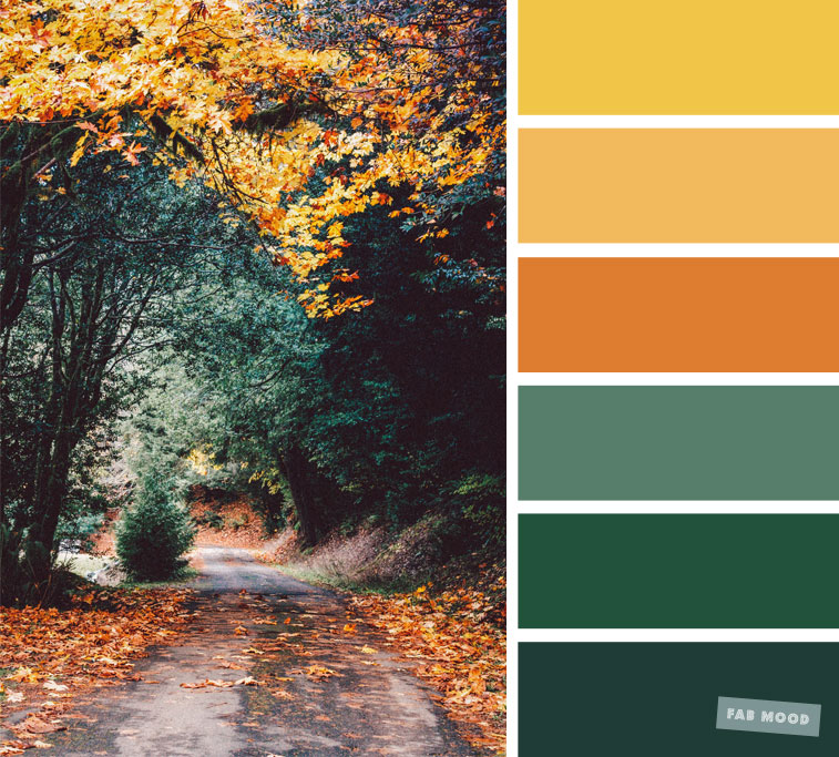 59 Pretty Autumn Color Schemes { Green + Orange + Yellow + Mustard } color palette #color #colorscheme #colorpalette #fall #autumncolour #autumn #fallcolor