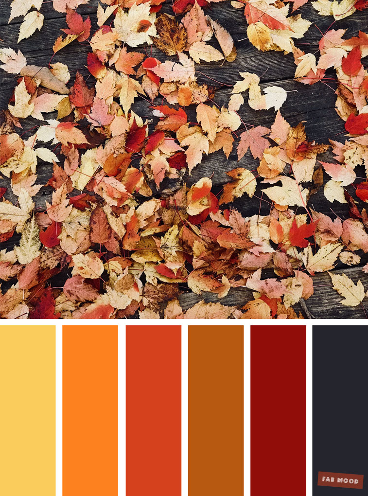 59 Pretty Autumn Color Schemes { Shades Of Autumn Leaves }