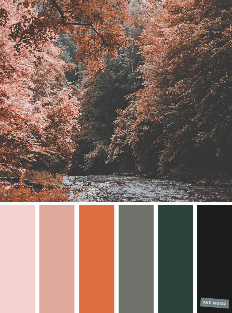 59 Autumn color schemes { Green + orange autumn leaves  color palette } #color #colorscheme #colorpalette #fall #autumncolour #autumn #fallcolor