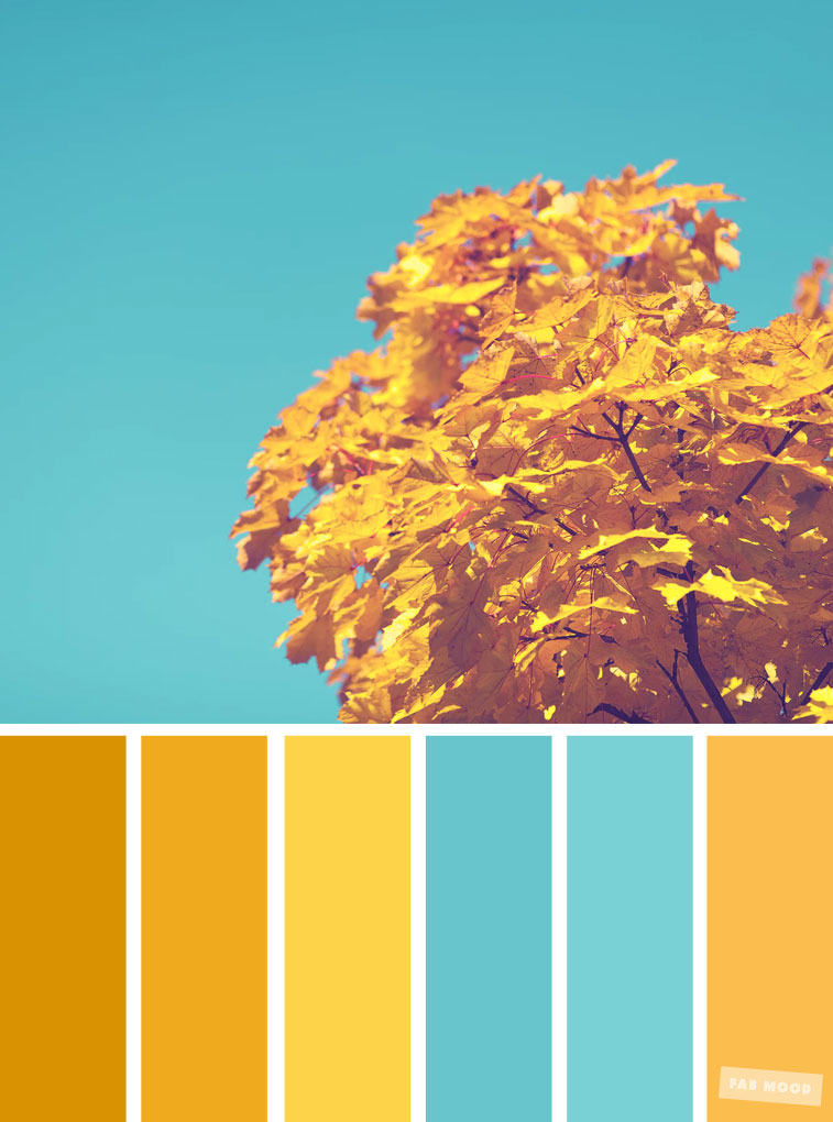 59 Pretty Autumn Color Schemes { Blue and Yellow }