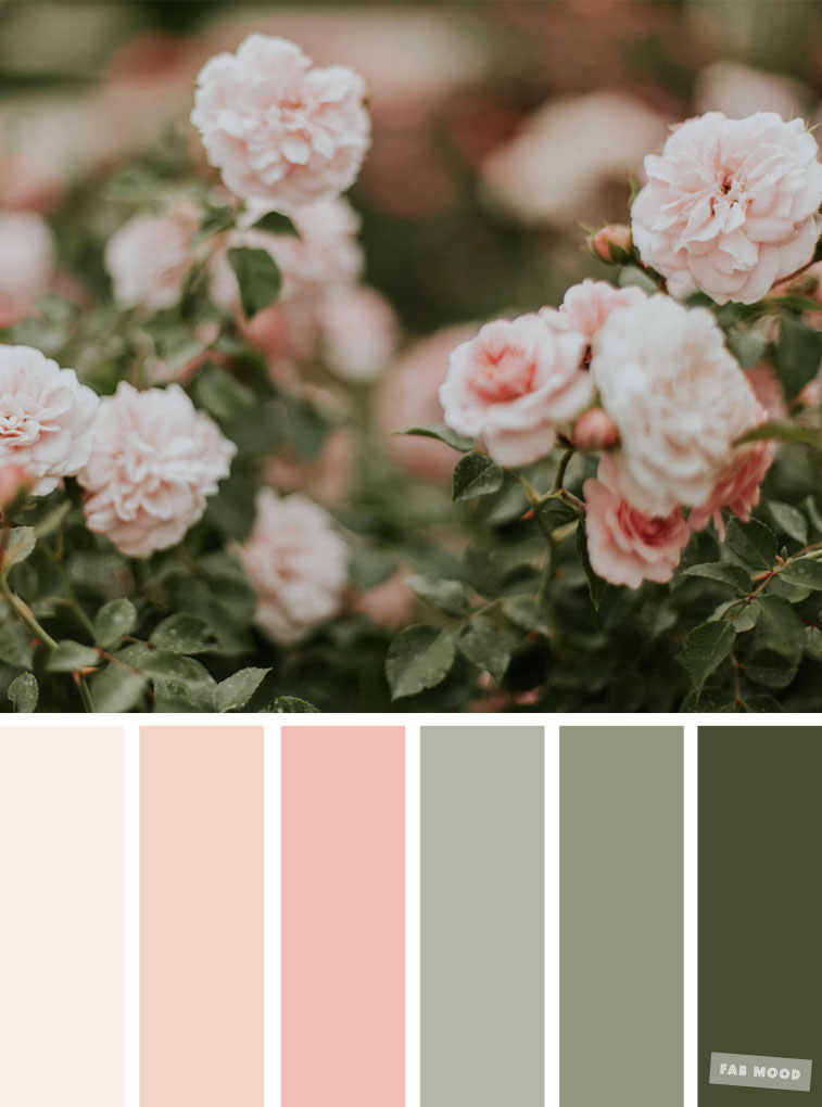 Pretty Spring Color Schemes { Blush + Sage }