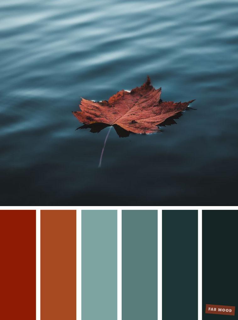 59 Pretty Autumn Color Schemes { Brown + Deep Ocean } color palette #color #colorscheme #colorpalette #fall #autumncolour #autumn #fallcolor