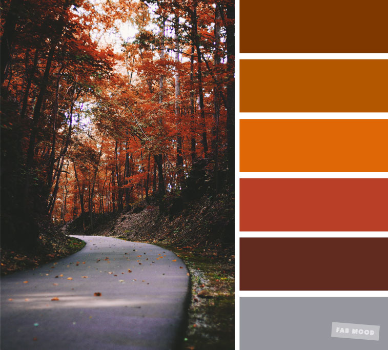 59 Pretty Autumn Color Schemes { Orange autumn leaves }