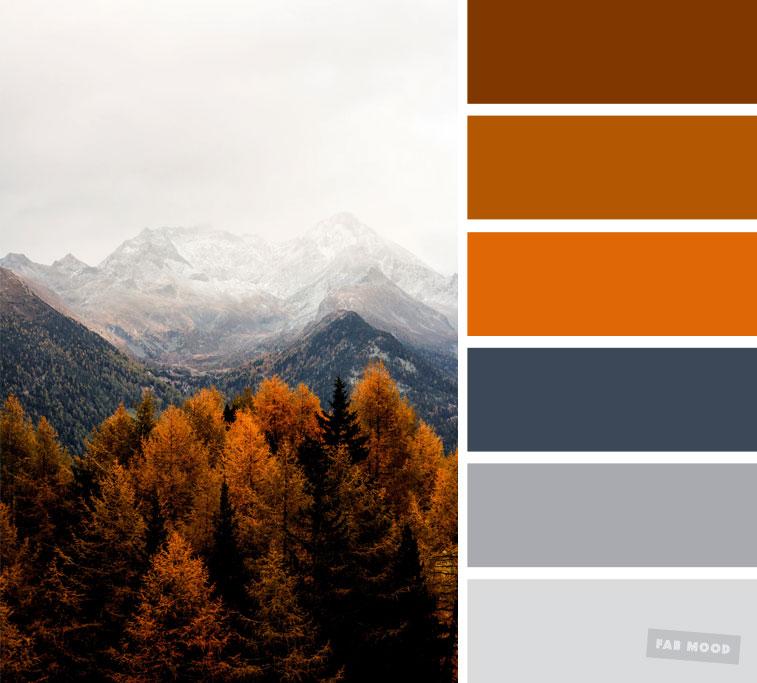 Pretty Color Schemes: 59 Pretty Autumn Color Schemes { Smokey + Burnt Orange