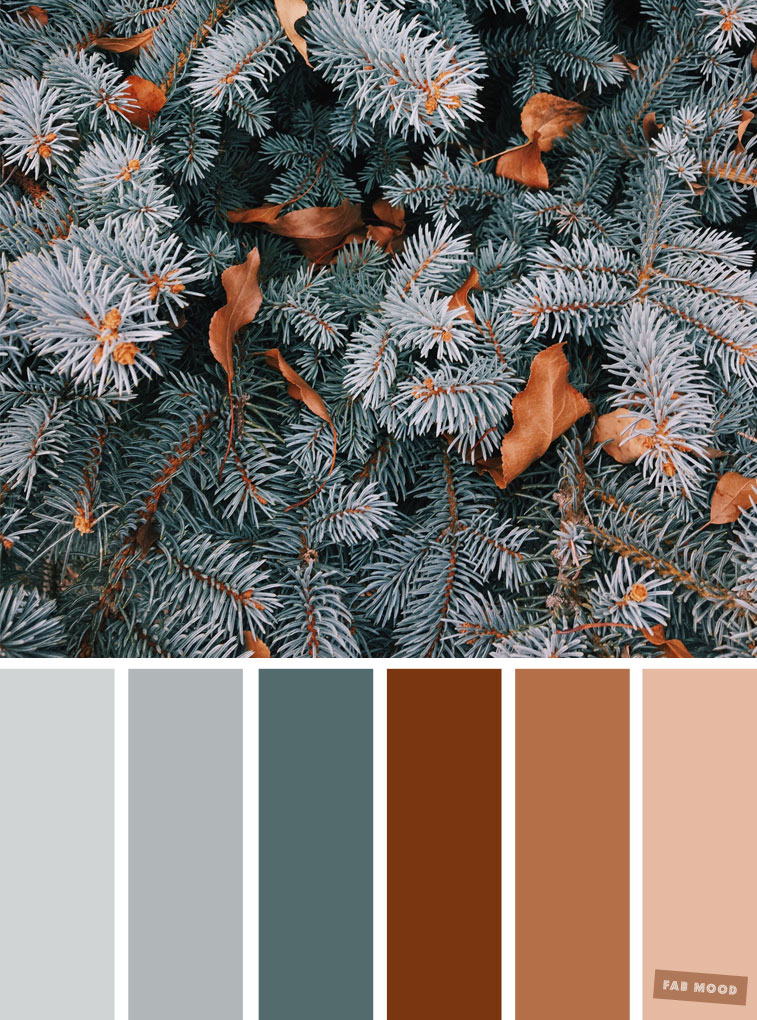 33 Pretty Winter Color Schemes { Grey + Pine + Brown }