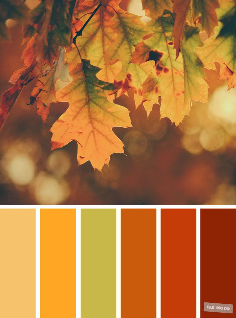 Autumn color scheme, color palette #color #colorscheme #colorpalette #fall #autumncolour #autumn #fallcolor