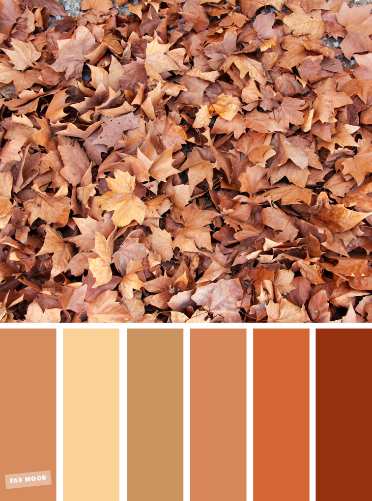 59 Pretty Autumn Color Schemes  { Golden brown autumn leaves }