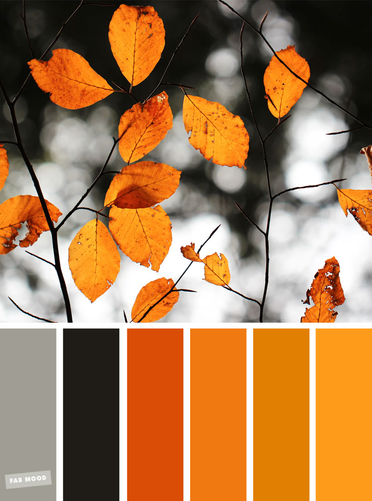 59 Pretty Autumn Color Schemes { Burnt orange autumn leaves }