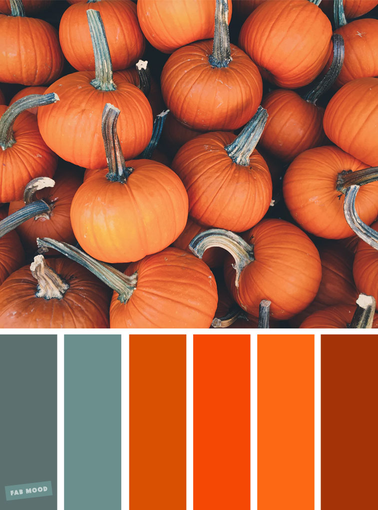 59 Pretty Autumn Color Schemes – { Orange Pumpkin Colour Inspiration }