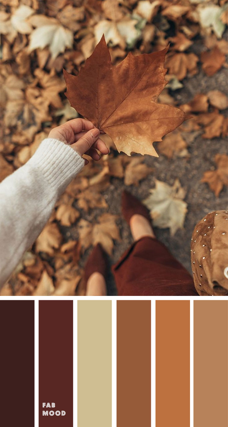 Brown autumn leaf color { Autumn Color Inspiration }