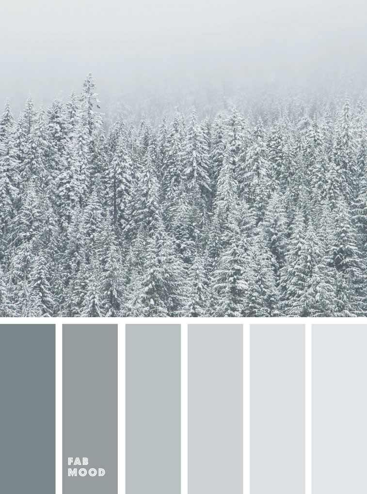 Misty grey green color palette
