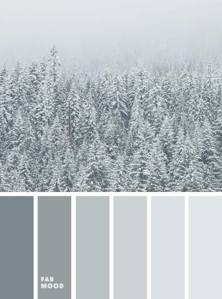 winter color palette, winter color ideas , mist grey green , silver sage, misty grey , misty grey green color