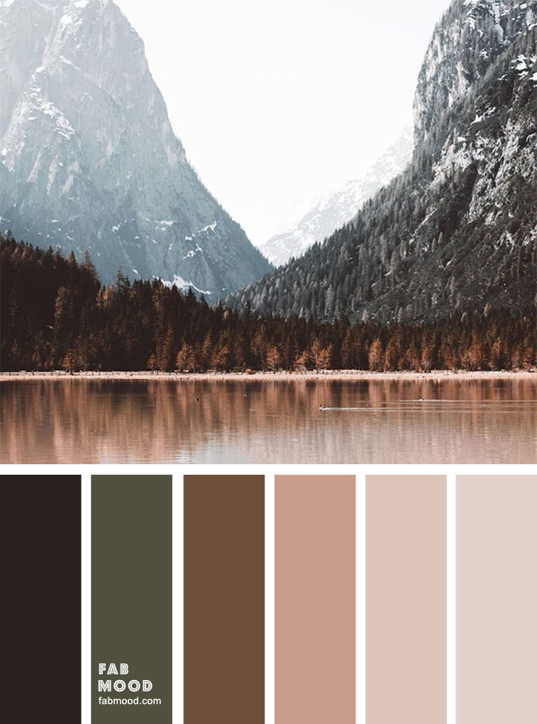 winter mood color palette, dark green and peach, color scheme, winter color combos #colors #winter #colorpalette