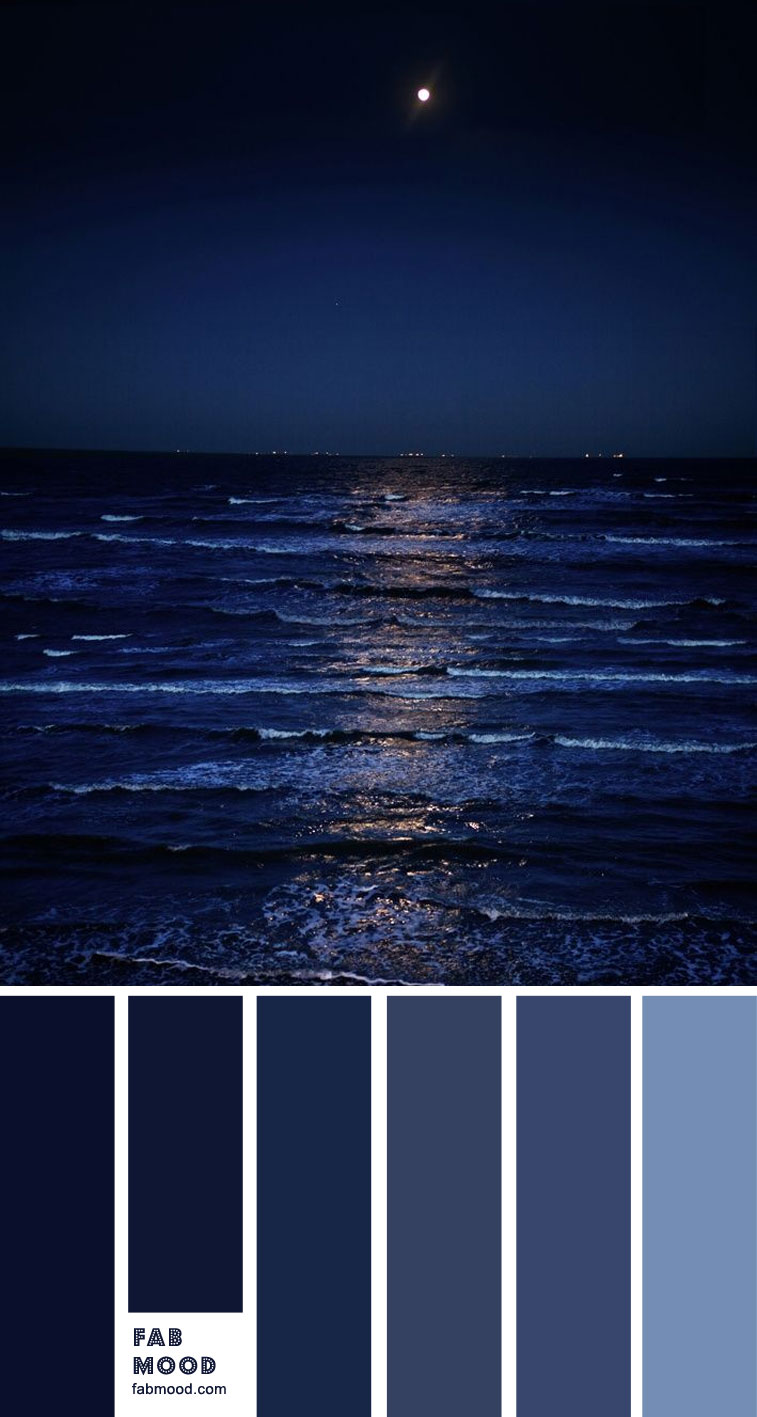 Midnight Blue and Powder Blue Color Palette