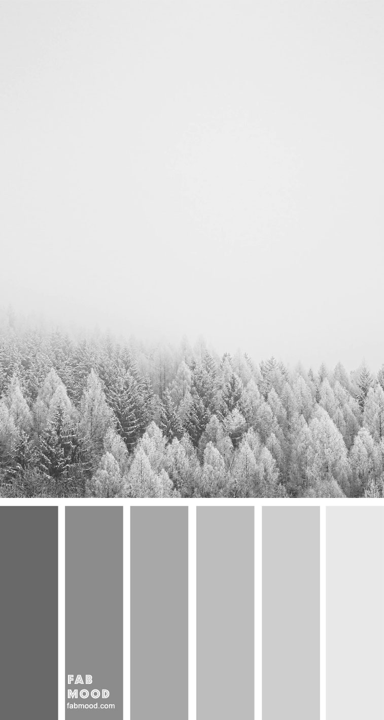 Shades of grey color palette