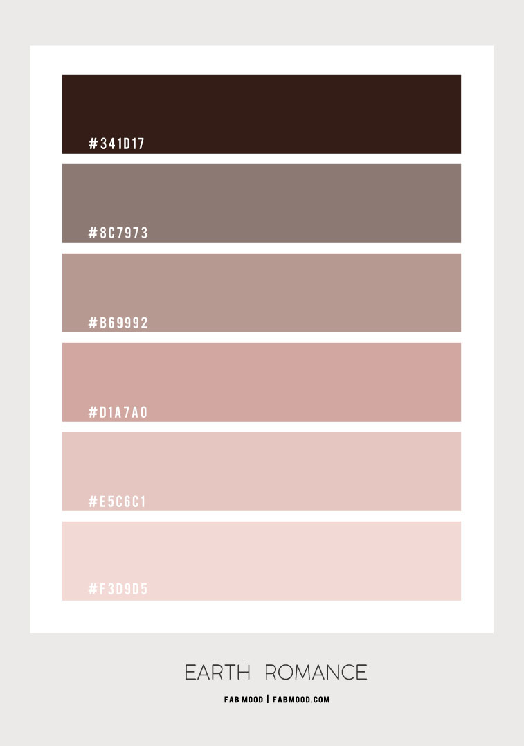 brown and pink colour palette, brown and pink colour combo, hex color, earth tones colour scheme, earth tone colour scheme, earth tones color combo #color #colorpalette