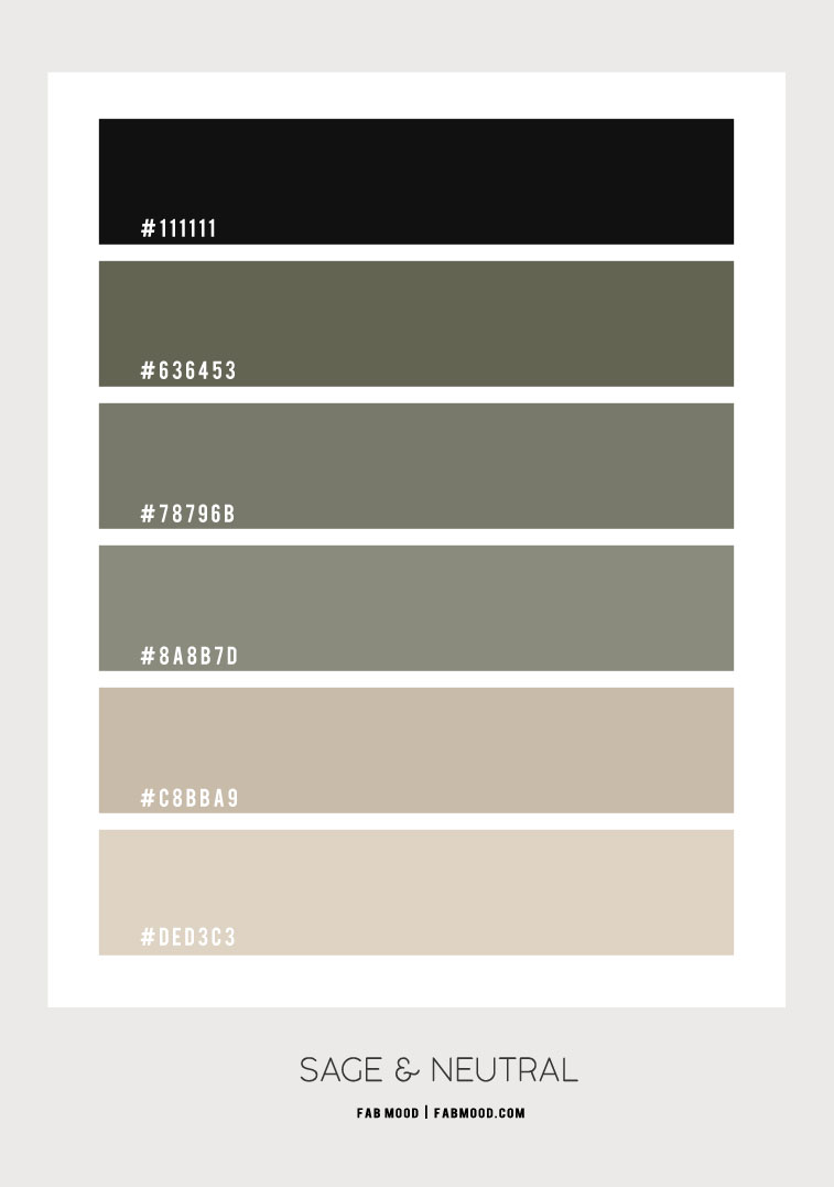 sage and neutral color scheme, color hex, sage color hex, sage green color combo, sage and neutral color combination, sage and neutral color combo