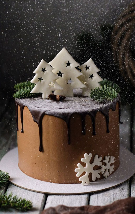 Winter Cake Ideas Must Try This Winter Season : Chocolate Winter Wonderland Cake