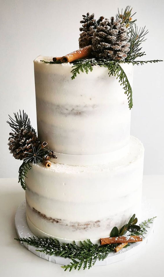 Winter Cake Ideas Must Try This​ Winter​ Season : Wintery Semi Naked Cake