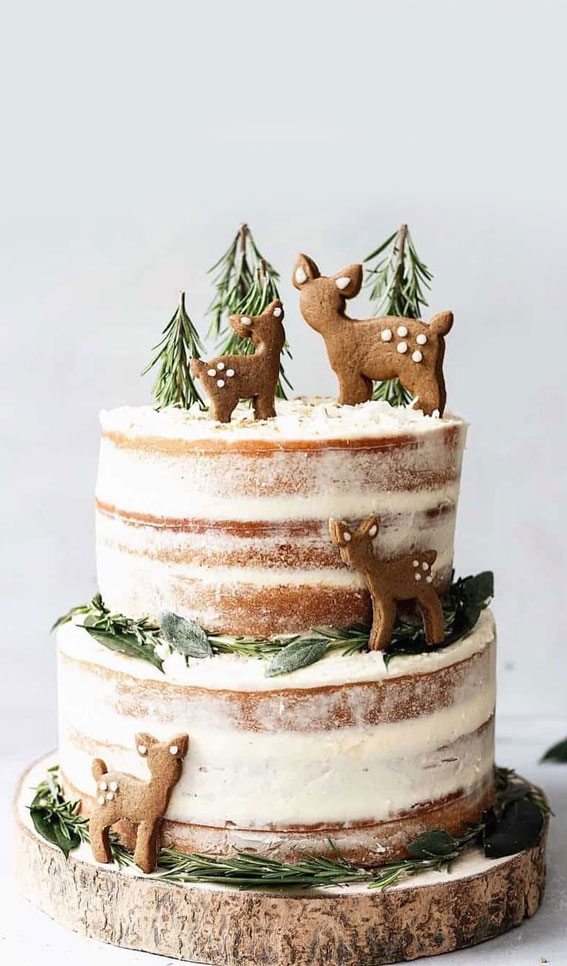 Winter Cake Ideas Must Try This​ Winter​ Season : Naked Winter Cake