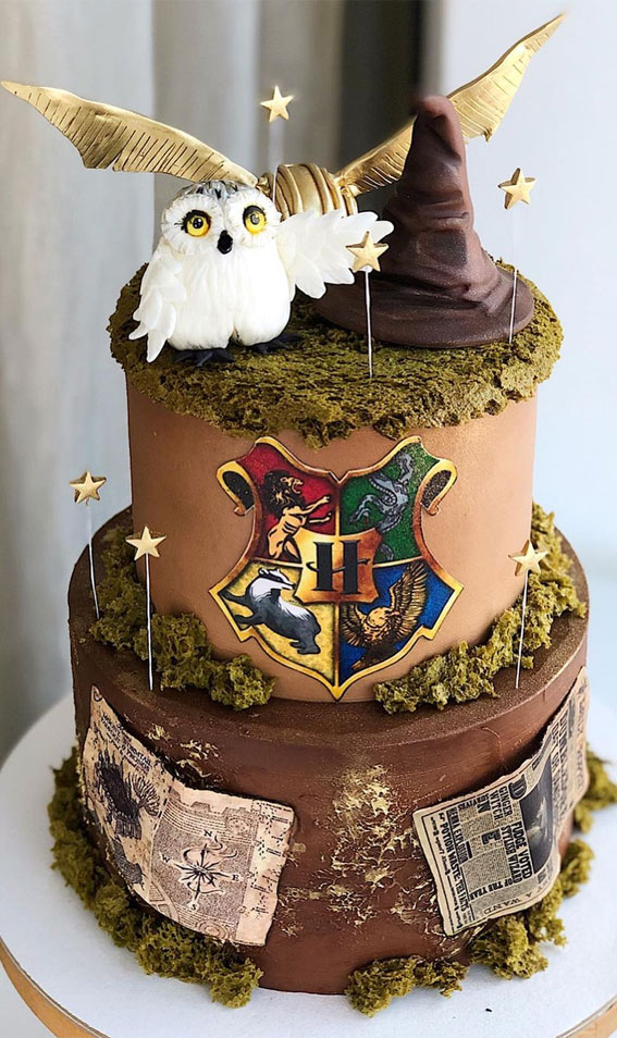 Pretty Cake Decorating Designs We've Bookmarked : Owl & Harry Potter Themed Cake