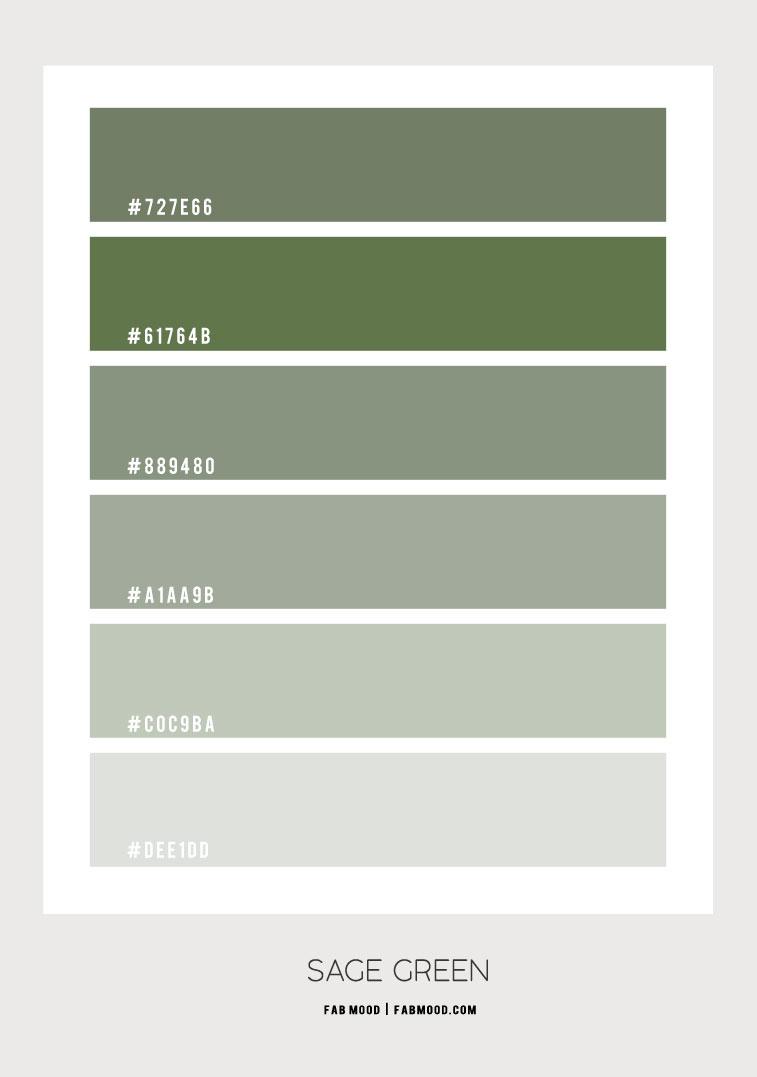 sage green color hex, sage green color combo, sage green colour scheme