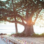beach theme wedding ideas,beach themed wedding reception,beach wedding reception pictures,wedding reception on the beach, beach wedding table decoration ideas, beach wedding table ideas,wedding reception on the beach ideas, beach wedding reception decoration ideas,beach wedding table setting,beach wedding place setting,beach wedding tablescapes