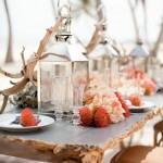 coral beach wedding tablescapes,beach theme wedding ideas,beach themed wedding reception,beach wedding reception pictures,wedding reception on the beach, beach wedding table decoration ideas, beach wedding table ideas,wedding reception on the beach ideas, beach wedding reception decoration ideas,beach wedding table setting,beach wedding place setting,beach wedding tablescapes