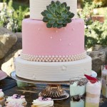 pink wedding cake ideas,pink wedding cake succulent