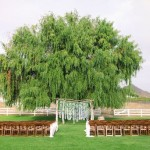 wedding ceremony ideas,wedding ceremony outdoor,wedding ceremony decoration,outdoor wedding ceremony decoration ideas
