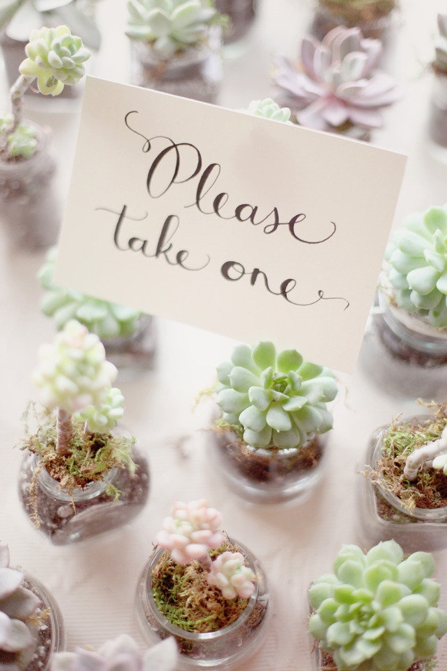 Succulent Wedding Favours Ideas Handmade Favors Diy