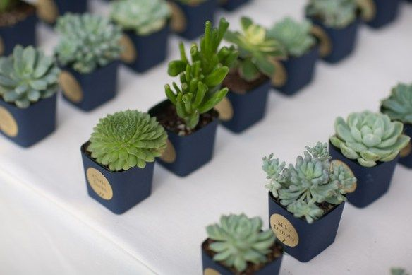 succulent wedding favors ideas