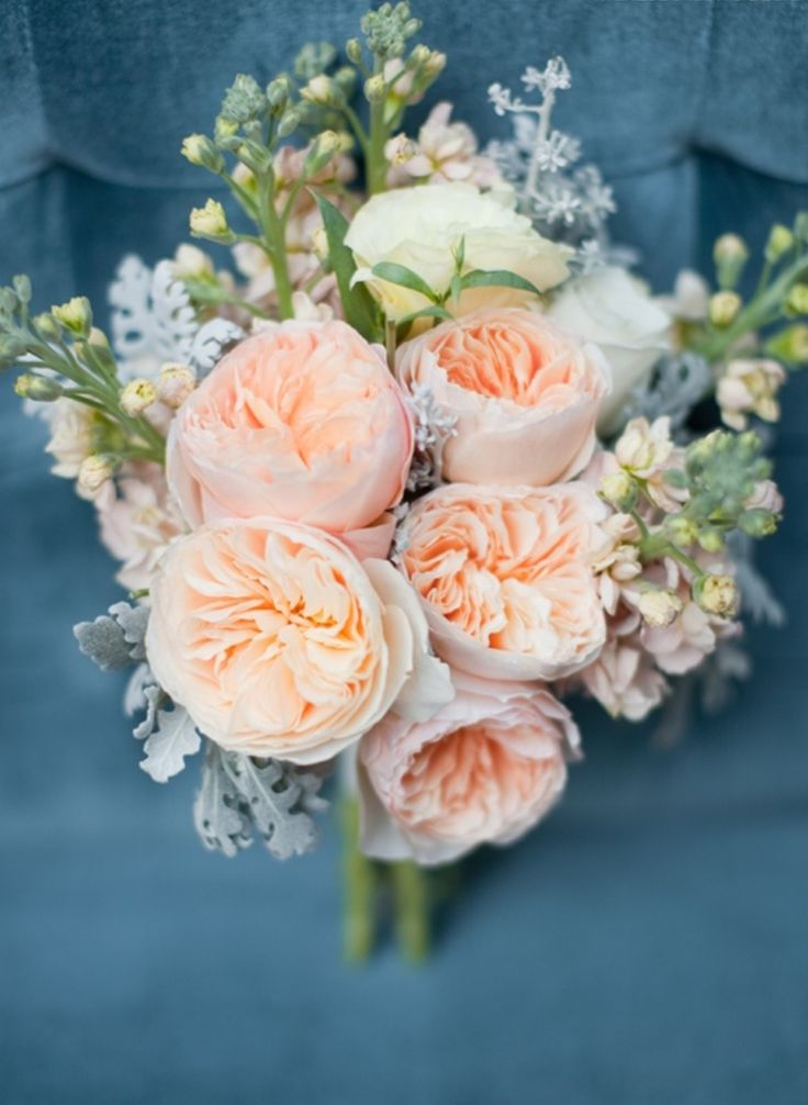 Peach garden rose bouquet pixshark images