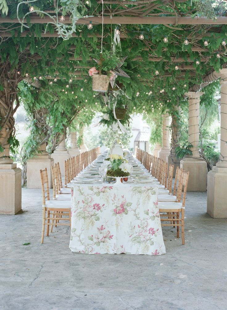 vine yard wedding reception