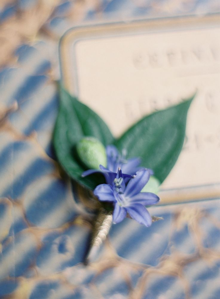boutonniere,bluebell mint navy blue wedding : beach wedding inspiration,navy blue mint beach wedding ideas,wedding colors,wedding palette,mint ocean blue bluebell beach