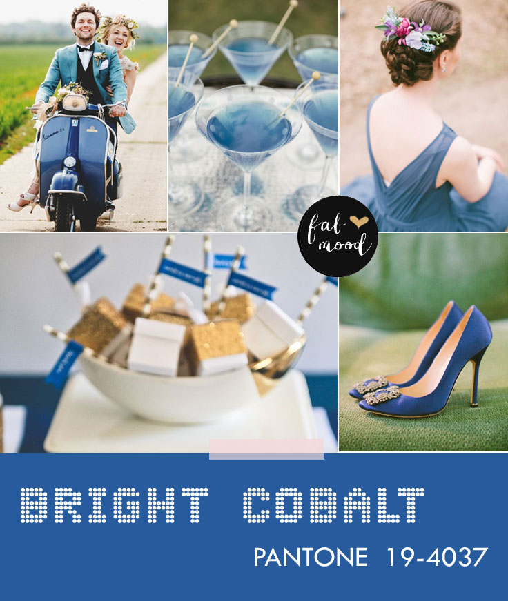 Bright cobalt wedding color fall 2014,wedding colors,wedding palette,wedding colors 2014,aurora red,sangria,autumn wedding colors,autumn wedding colors 2014,misted yellow,aluminum,cognac,radiant orchid,mauve,fall wedding colors,top wedding colors 2014