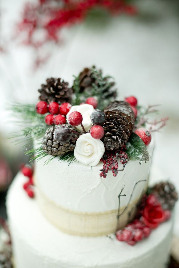 Winter wedding cake idea | photographed by Amber Lynn Photography