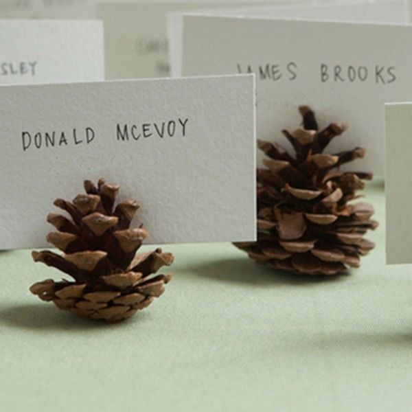 Unique wedding reception ideas on a budget – creative and simple pine cone place cards