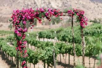 Wedding ceremony ideas with pretty style