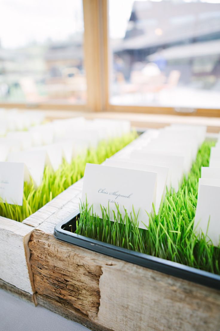 creative idea wheatgrass escort card | fabmood.com