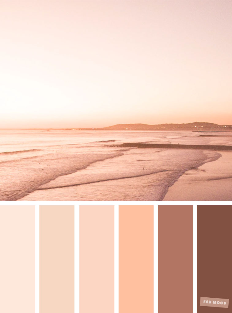 Pretty shades of blush neutral earth tone color schemes
